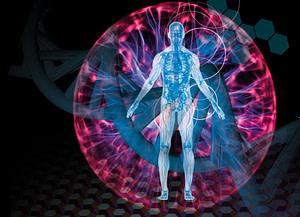 Los Efectos de las Radiaciones Electromagnéticas en la Salud Humana